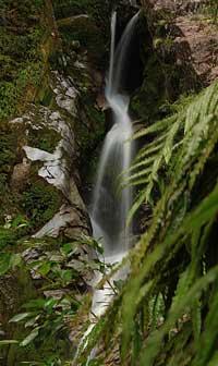 dorothy-falls